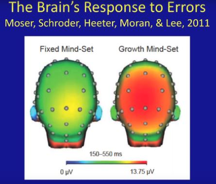 Growth-Mindset-brain-activity